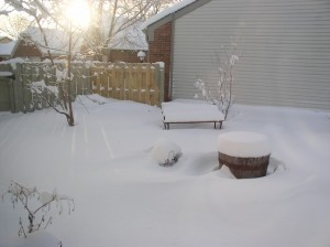 01-05-2014 Snow